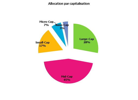 http://maxicool5.free.fr/Bourse/Reporting%20AP%202015/001%20-%20D%e9c%202014/5%20-%20Alloc%20Capi.jpg