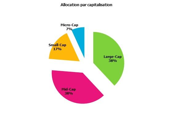 http://maxicool5.free.fr/Bourse/Reporting%20AP%202015/002-%20Janv%202015/05%20-%20Alloc%20Capi.jpg